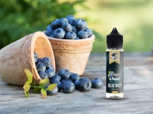 NAKED BLUE MIST E-LIQUID